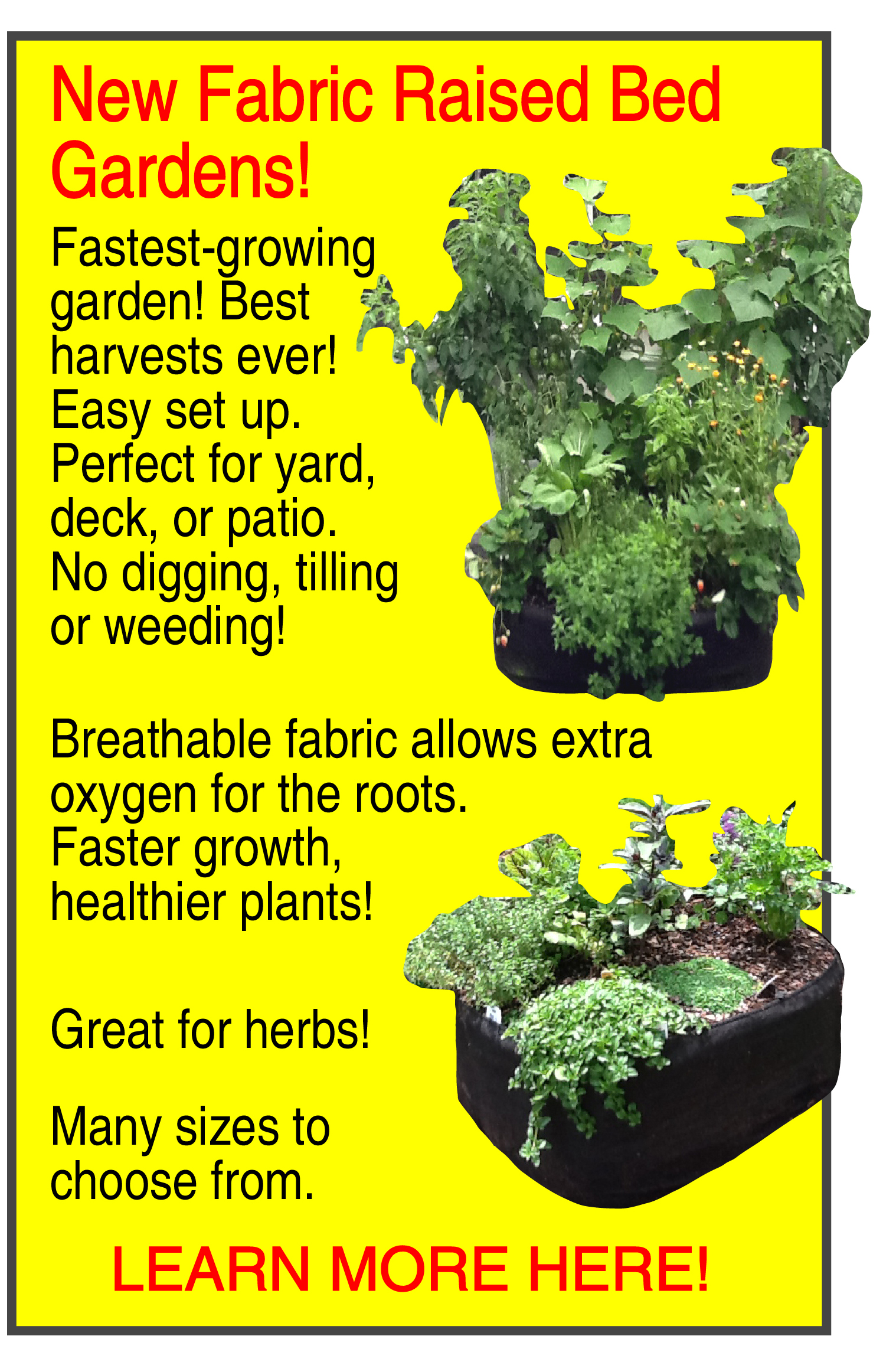 No dig vegetable gardens with raised garden beds - Good Raised Garden Beds Landscape Cloth 18 On Inspiration Article